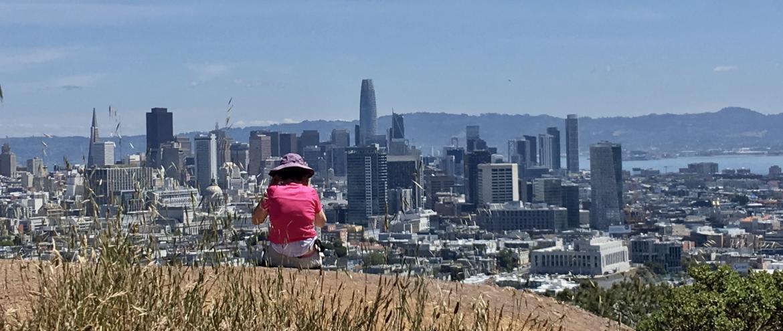 Vue sur le Downtown San Francisco depuis une colline