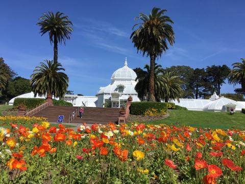 Photo : Academy of Flowers dans le Golden Gate Park San Francisco