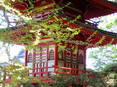 Pagode du jardin japonais Japanese Tea Garden