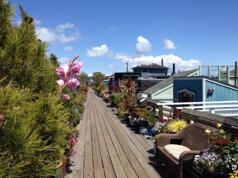Photo : jardins et maisons flottantes